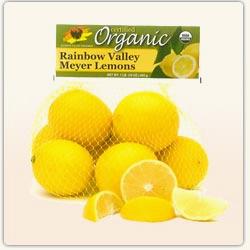 meyer_lemons1
