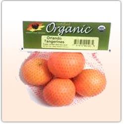 tangerines1